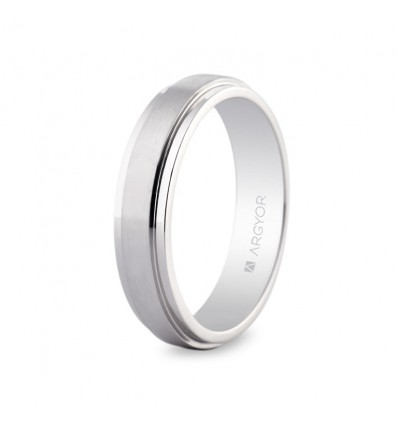 Alianza de platino plana 5mm 0595008